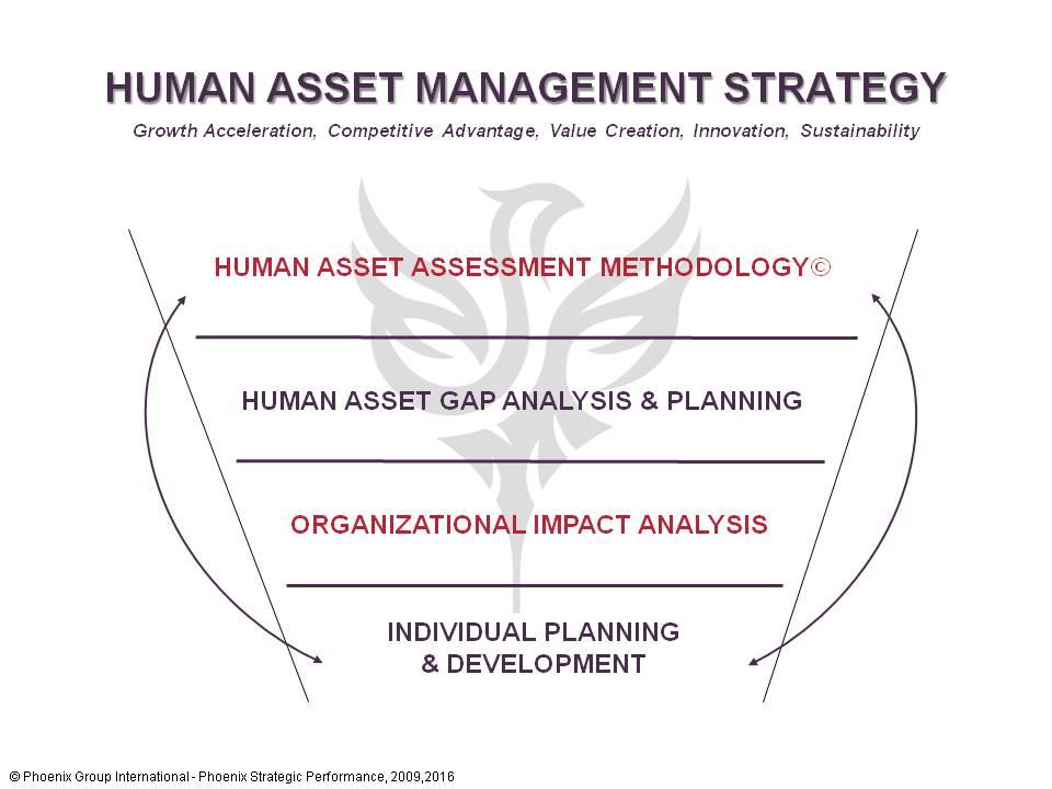 Human_Asset_Management_Strategy.jpg