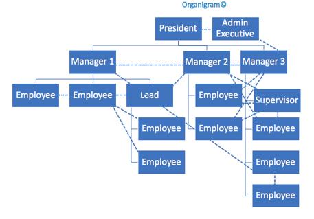 Organigram Chart